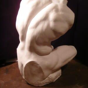 Belvedere Torso study, Plaster , 2011